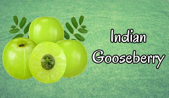 Indian Gooseberry Powers Up Immunity