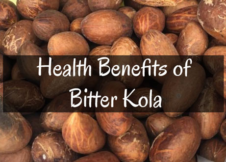 Health Benefits of Bitter Kola