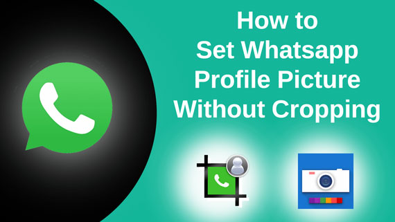 Setup Whatsapp Profile Picture or Dp Without Cropping